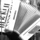 nakamakov-accordion